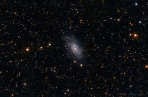 NGC2403 cropped