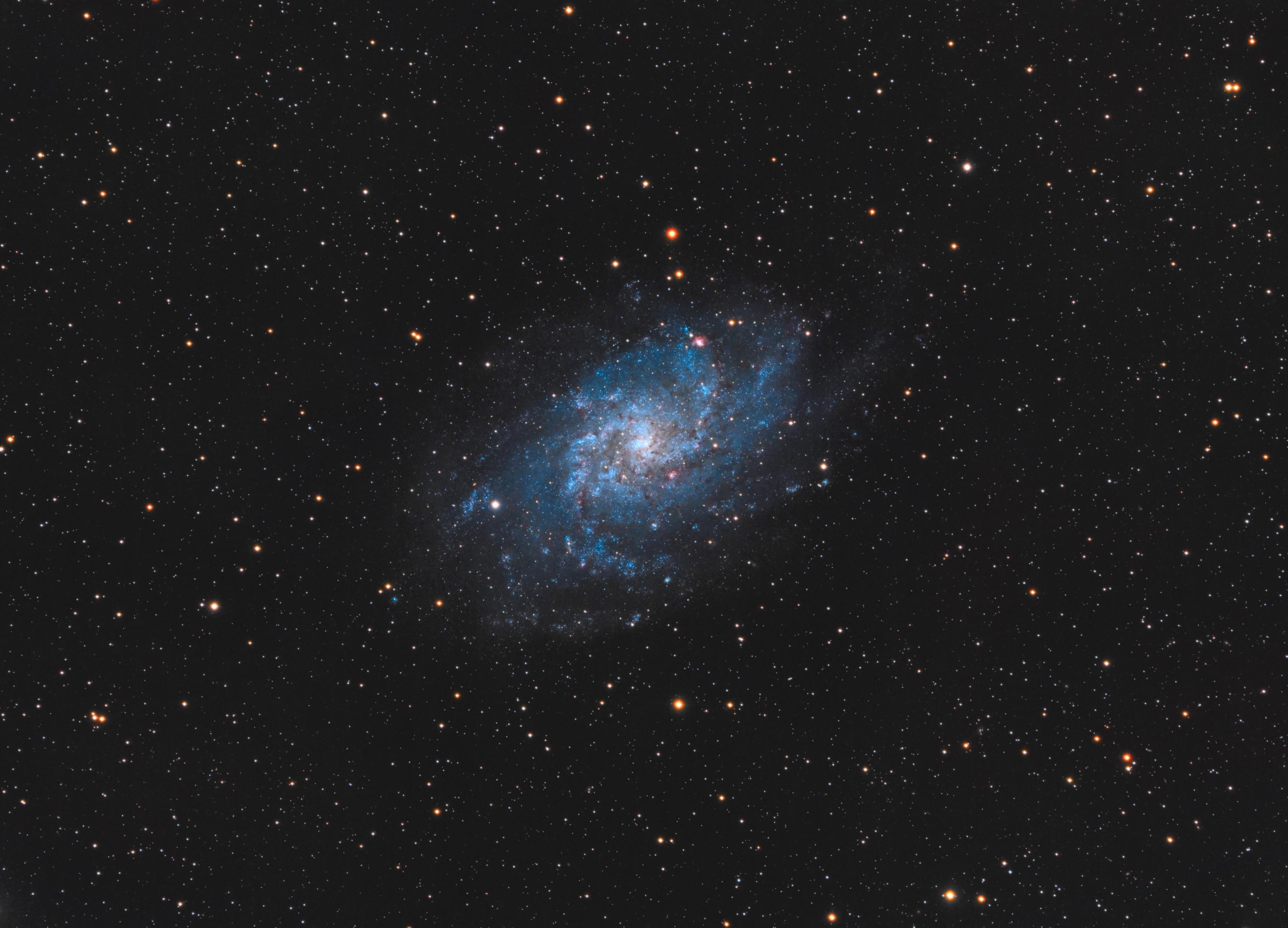 M33 - 2016