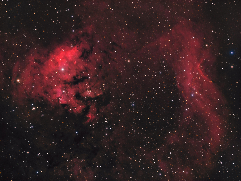 Ced214, NGC7822