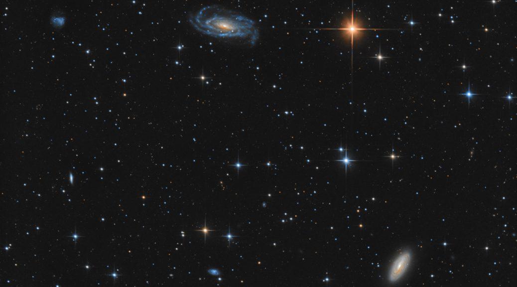 NGC 5033 and NGC 5005
